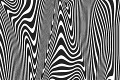 Wavy stripes pattern background of twisted curved black and white abstract ripple lines background. Vector modern trendy 3D curves. Or geometric zebra texture Royalty Free Illustration