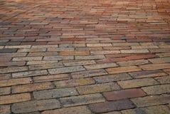 wavy tegelstenwalkway Royaltyfri Foto