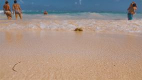 Wavy tropical beach in tropical counrty island beach. Slow motion. Wave Water white foam of the Atlantic Ocean wave of Domanicain republic. Holiday and relax stock video footage