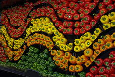 A wavy wall of colourful peppers. A wavy wall of green ,red, yellow ,orange and green peppers Royalty Free Stock Image