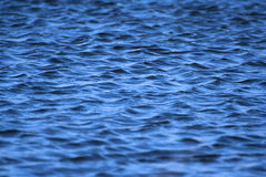 Wavy water Royalty Free Stock Photography