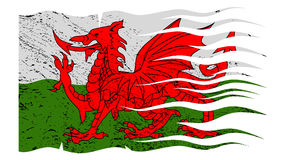 Wavy Welsh Flag Grunged. A wavy grunged Welsh flag design  on a white background Royalty Free Stock Photo
