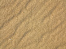 Wavy yellow sand texture background Royalty Free Stock Images