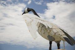 Wawa Goose Stock Image