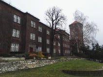 Wawel城堡周围的大厦在克拉科夫,波兰 免版税库存图片
