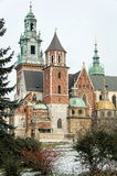 Wawel. The cathedral on Wawel, Krakow, Poland in winter royalty free stock photography