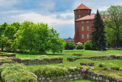 Wawel Images stock