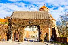 Wawel Royalty-vrije Stock Afbeeldingen