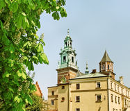 Wawel castle. Stock Photography