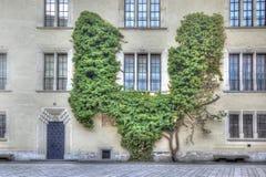 Wawel Castle Στοκ φωτογραφία με δικαίωμα ελεύθερης χρήσης