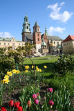 Wawel Castle in blooming flowers. Krakow. Poland. Royalty Free Stock Photos