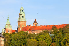 Wawel Castle in Kracow, Poland Royalty Free Stock Images