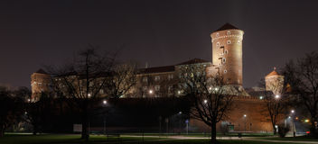 Wawel Castle. The Wawel Castle in Krakow at night Stock Photo