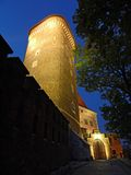 Wawel Castle by night Stock Photography