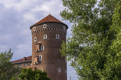Wawel Castle Royalty Free Stock Image