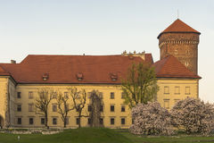 Wawel Castle Stock Image