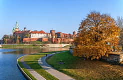 Wawel Castle and Vistula River in Fall, Cracow Poland. Royal Wawel castle, Vistula river bend, promenades and an autumn tree at sunset in Krakow, Poland Royalty Free Stock Image