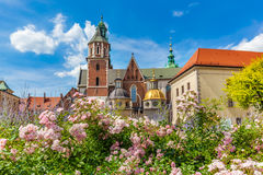 Wawel Cathedral, Cracow, Poland. View from courtyard with flowers. Stock Photo