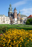 Wawel cathedral, Krakow, Poland Royalty Free Stock Photos