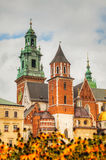 Wawel Cathedral at Wawel Hill in Krakow, Poland Royalty Free Stock Photos