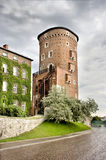 Wawel in Cracow Royalty Free Stock Photos