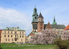 Wawel in Cracow Royalty Free Stock Photo