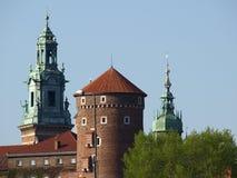 wawel de Cracovie de côte de castel Image libre de droits