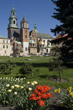 Wawel and flowers2 Royalty Free Stock Photography