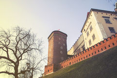 Wawel hill with cathedral and castle in Krakow Royalty Free Stock Photo