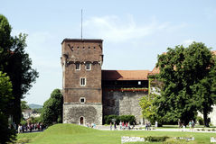 Wawel Hill of Krakow in Poland Stock Images