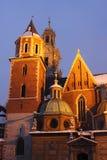 Wawel Kathedrale Lizenzfreies Stockbild