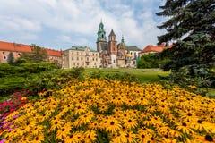 Wawel - Krakau Stock Foto
