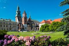 Wawel in Krakau Stock Afbeelding