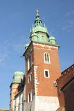 Wawel in Krakau, Kathedraal van Stanislaw van Heilige en Vaclav Royalty-vrije Stock Foto