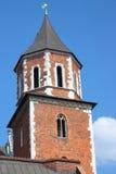 Wawel in Krakau, Polen Royalty-vrije Stock Foto's