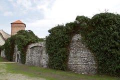 wawel krakow замока Стоковые Фотографии RF