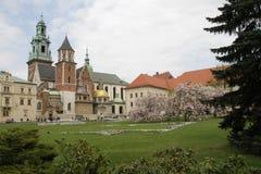 wawel krakow замока Стоковые Фото