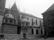 wawel krakow Польши собора Стоковое Изображение