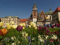 Wawel kulle i Krakow, Polen royaltyfria foton