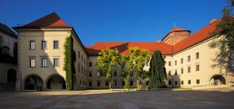 Wawel kungligt slott i Krakow, Polen Royaltyfri Foto