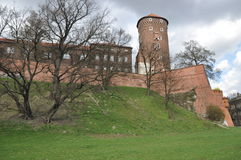 Wawel Schloss Stockfoto