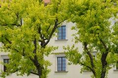 Wawel Schloss in Krakau Lizenzfreies Stockfoto