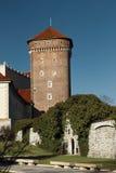 Wawel slott Arkivfoton