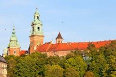 Wawel slott i Kracow, Polen Royaltyfria Bilder