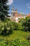 wawel zamek Krakow Poland Zdjęcie Royalty Free