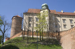 Wawel2 Royalty Free Stock Photography