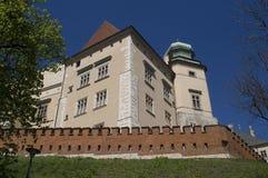 Wawel3 Royalty-vrije Stock Afbeelding