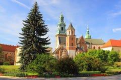 Wawelkathedraal in Krakau, Polen Stock Fotografie