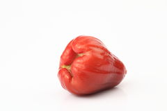 Wax apple. The white background of wax apple Stock Photo