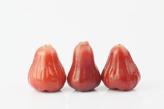 Wax apple. The white background of wax apple Stock Images
